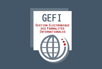 service_GEFI